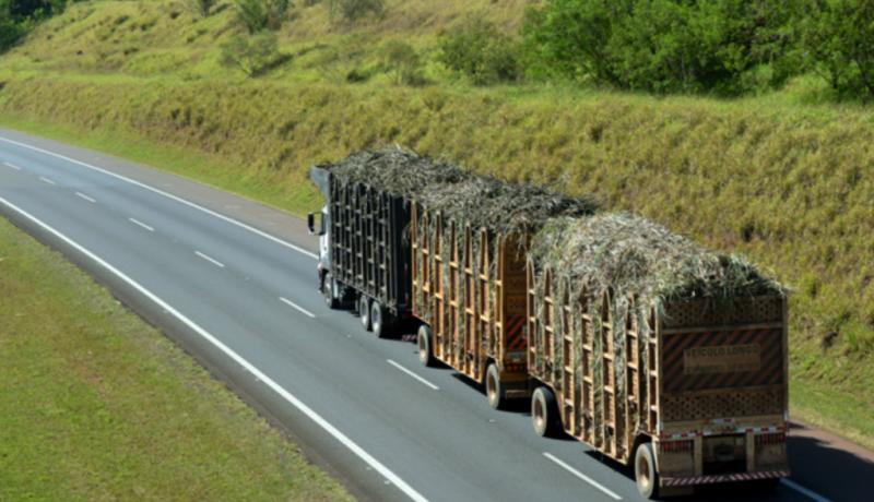 Caminhão carregando toneladas de cana de açúcar